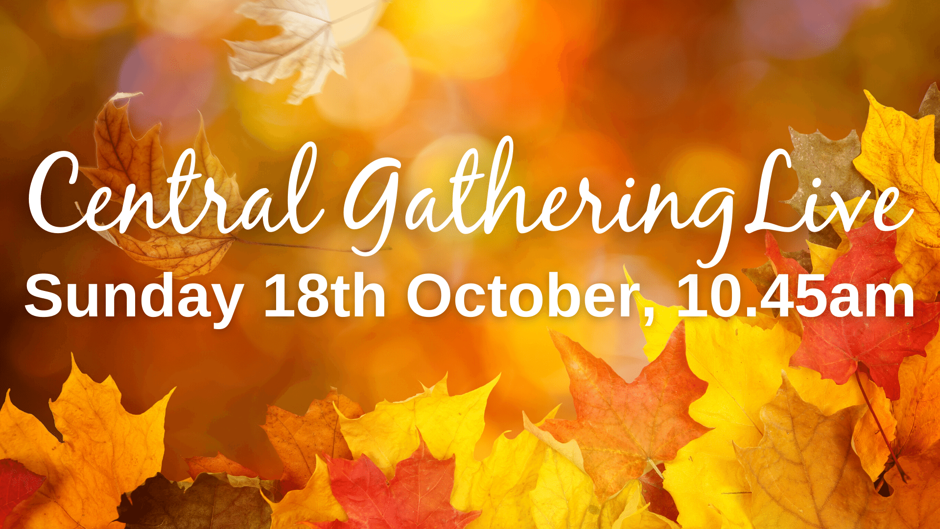 Central Gathering Live (thumbnail for schedule)
